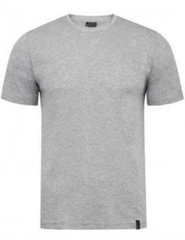 Jasnoszary T-shirt męski Imako - Aleksander